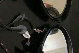 # Pasqyra Porsche Panamera.