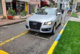 Audi, Q5, 2009, Benzinë